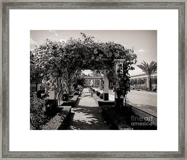 Courtyard Landscape Bw Getty Villa  Framed Print