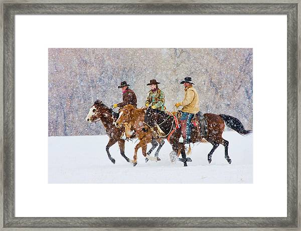 Cowboys And Cowgirl Riding Snowfall Framed Print by Danita Delimont