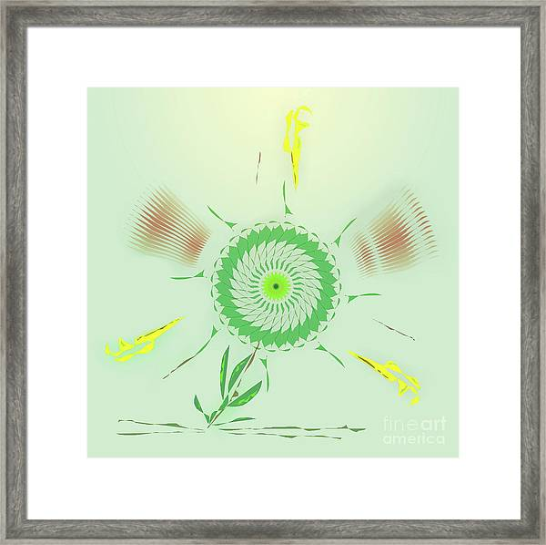 Crazy Spinning Flower Framed Print
