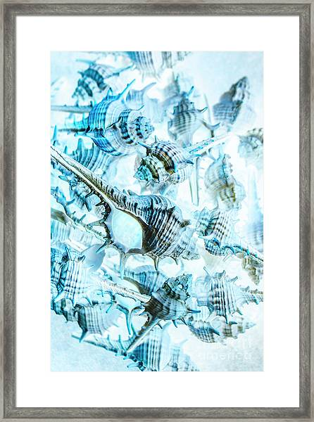 Creative Seas Framed Print