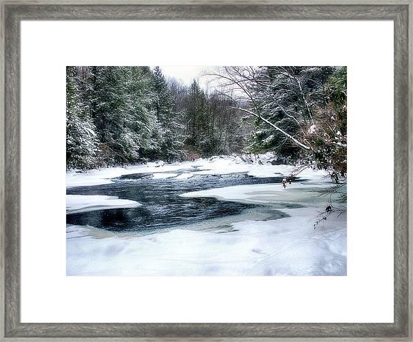 Cucumber Run In Winter Framed Print
