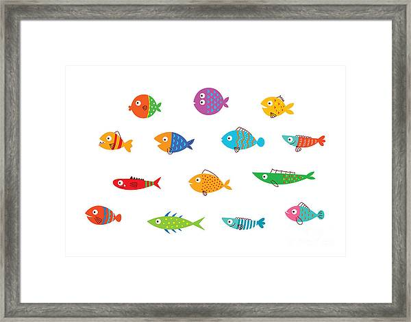 Cute Fish Vector Collection Framed Print