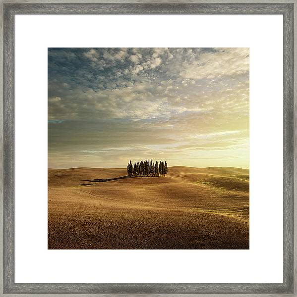 Cypress Trees In Tuscany Framed Print by Peter Zelei Images