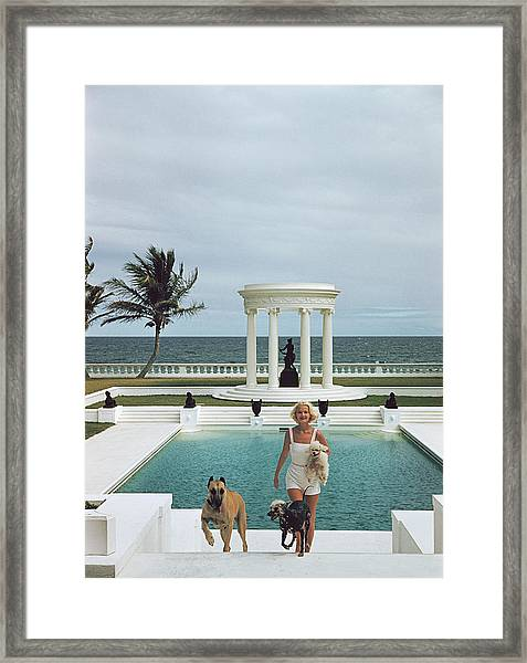 Czs Dogs Framed Print
