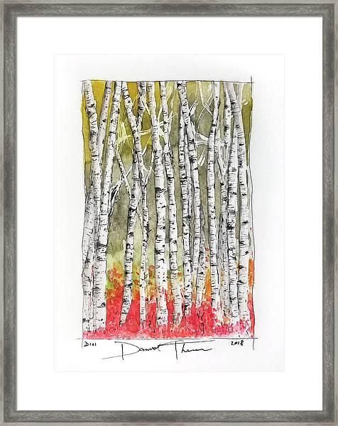 D101 Framed Print