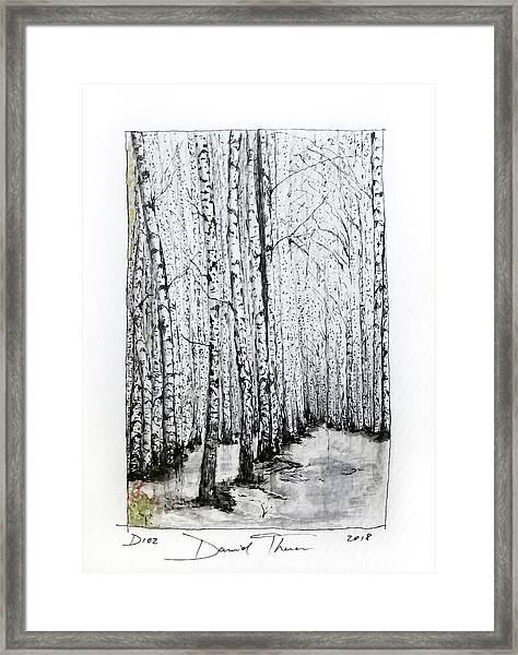 D102 Framed Print