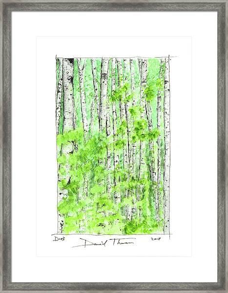 D103 Framed Print