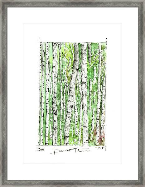 D105 Framed Print