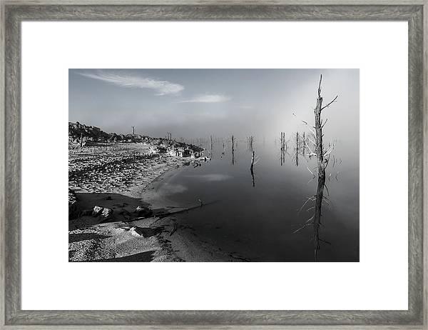 D1091 - Theewaterskloof Trees Framed Print