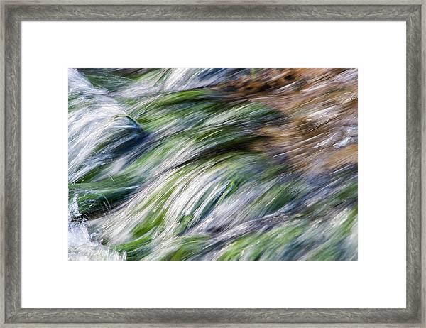 D1663 Framed Print