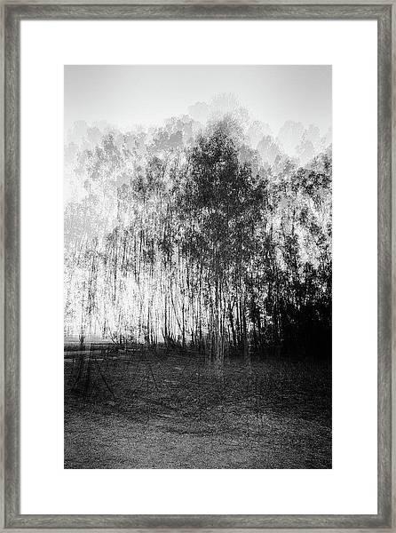 D1984p Framed Print