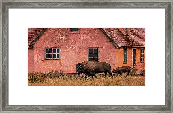 Daddy's Home Framed Print