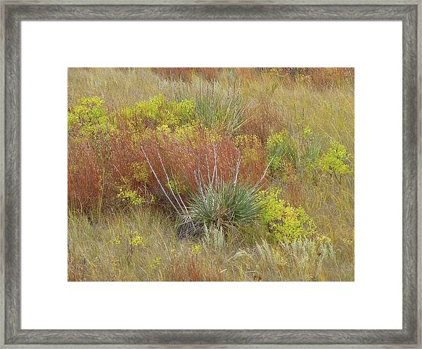 Framed Print featuring the photograph Dakota Prairie Brocade by Cris Fulton