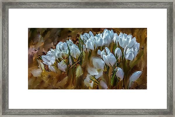 Dance In White #i6 Framed Print