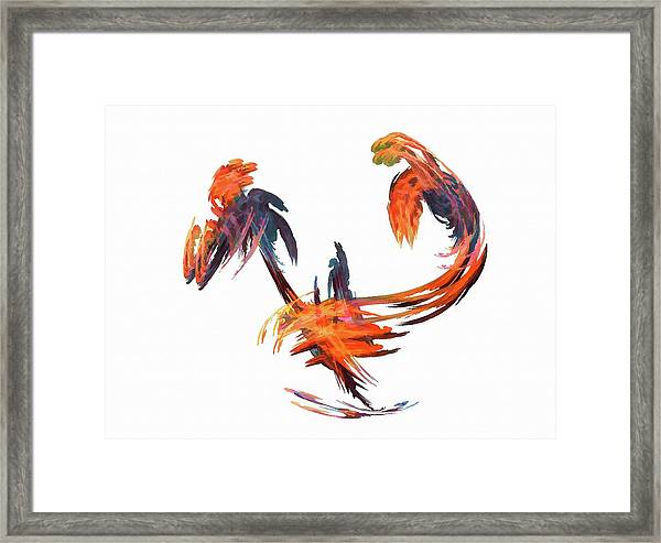 Dance Of The Birds Orange Framed Print