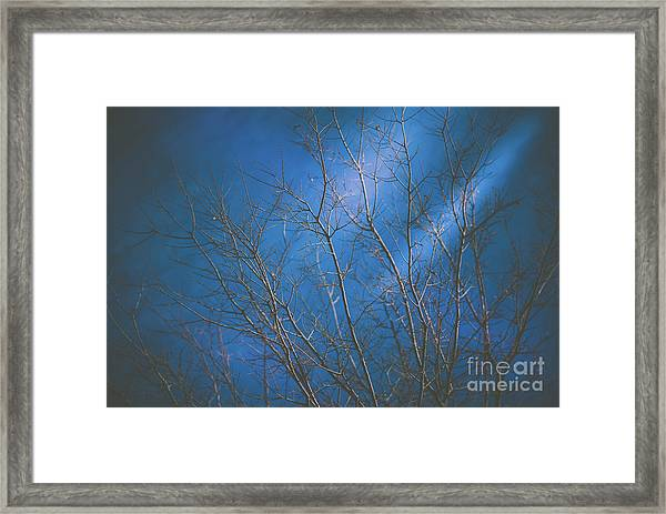 Dark Winter Framed Print