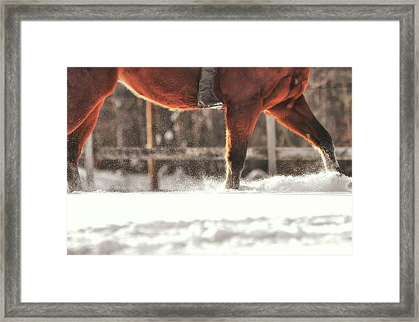 Dashing Through The Snow Framed Print by JAMART Photography