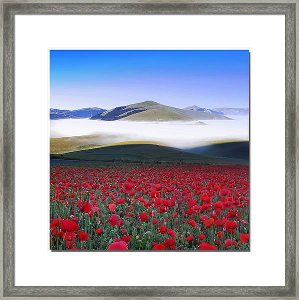 Dawn Of New Day Framed Print
