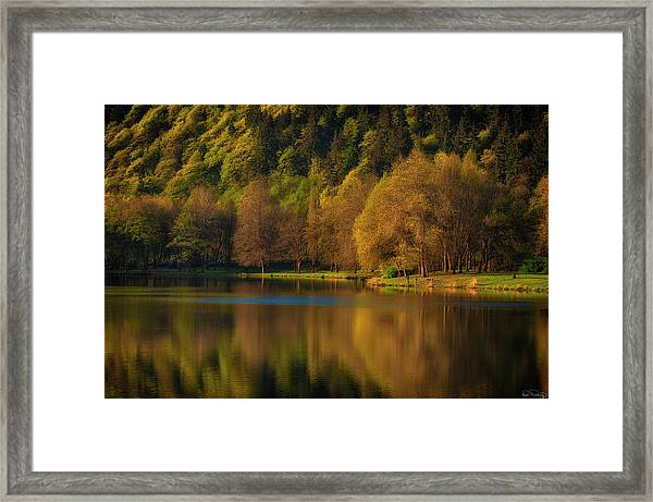 Framed Print featuring the photograph Dawn's Light Along A Lakes Shore by Dee Browning