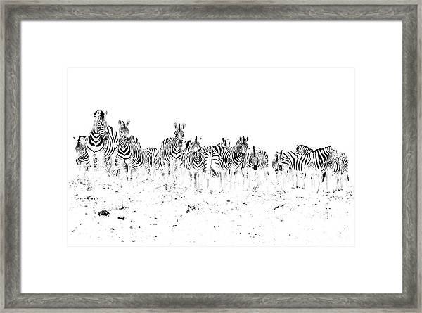Dazzle Framed Print