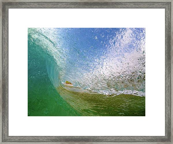 Dazzled Framed Print
