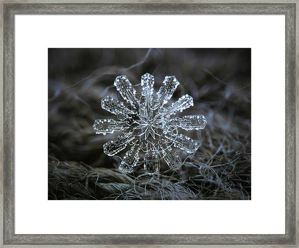 December 18 2015 - Snowflake 3 Framed Print