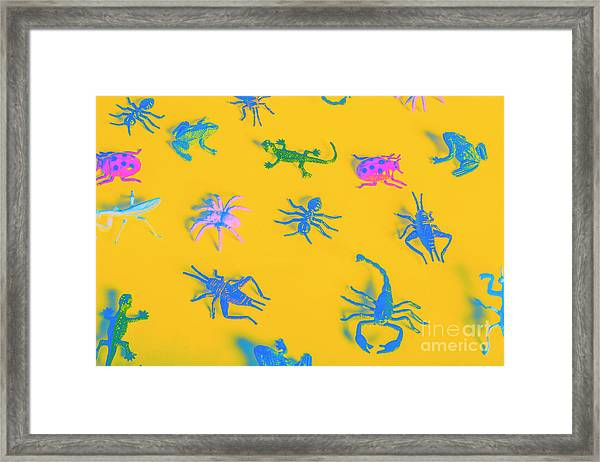 Decorative Creatures Framed Print