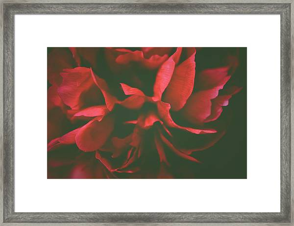 Deep Red Framed Print