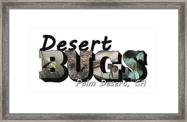 Desert Bugs Big Letter Framed Print