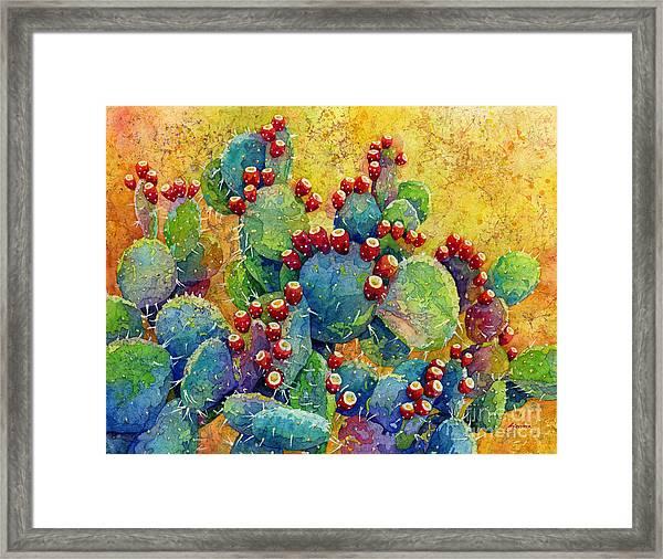 Desert Gems Framed Print