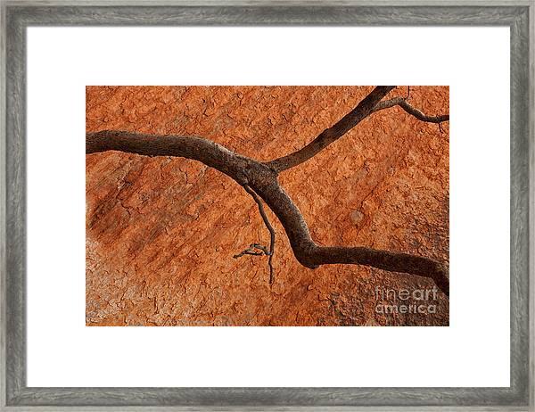Desert Orange Framed Print
