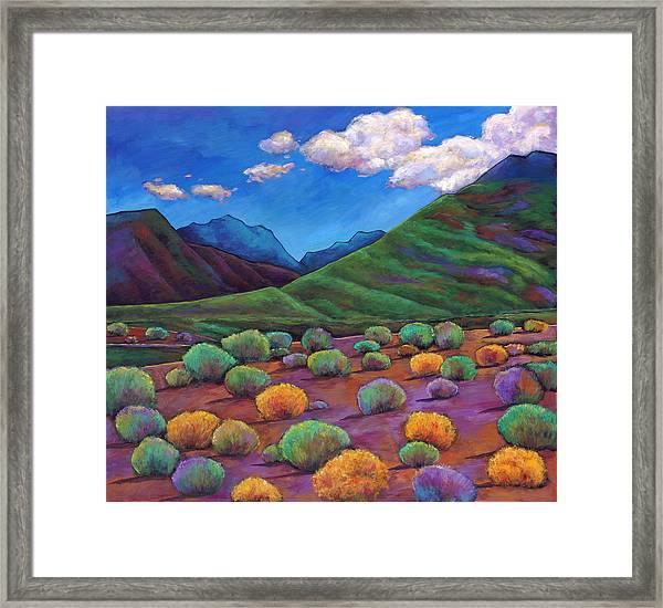 Desert Valley Framed Print