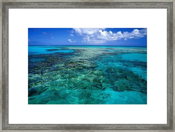 Devils Backbone, A Ragged Shallow Reef Framed Print