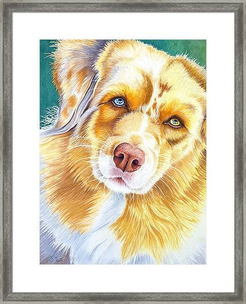 Did You Say Cookie ? Framed Print
