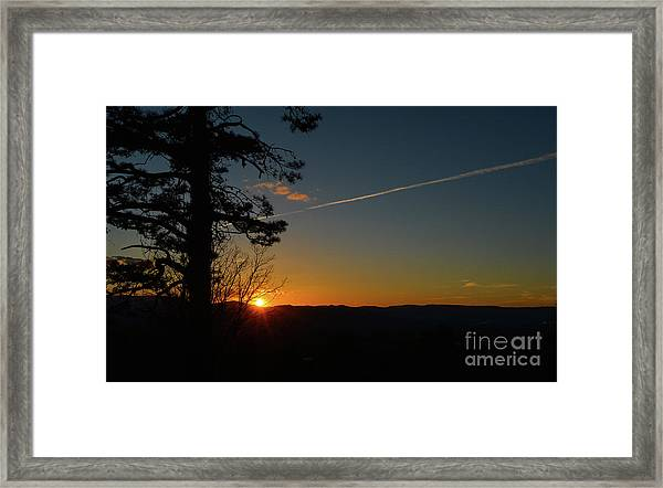 Dipping Down Framed Print