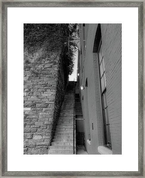 Does Evil Lurk Above? Framed Print