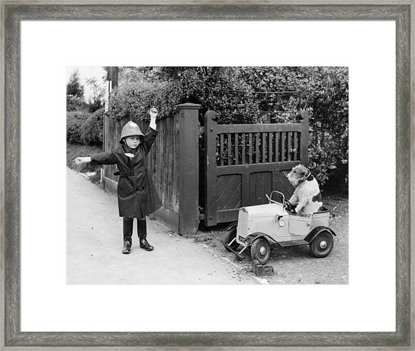 Doggy Driver Framed Print