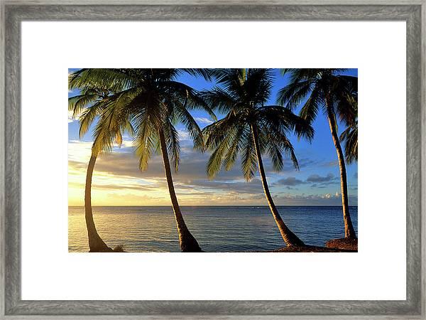 Dominican Republic, Samana Province Framed Print