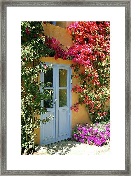 Door To A Fairytale House Framed Print