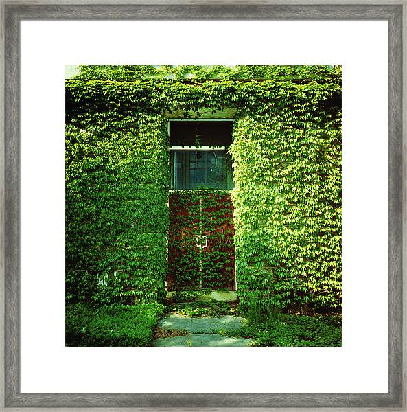 Doors Covered By Ivy Framed Print by Silvia Otte