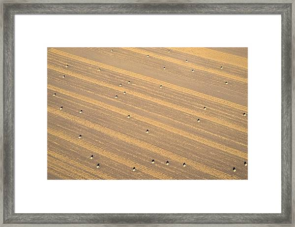 Dot Matrix Framed Print
