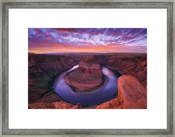Down Beauty Framed Print