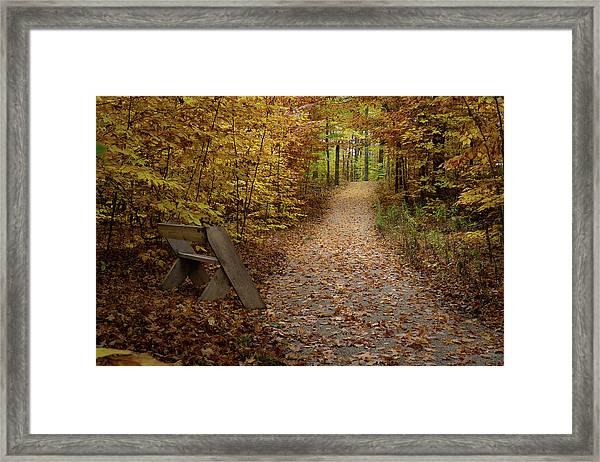 Down The Trail Framed Print