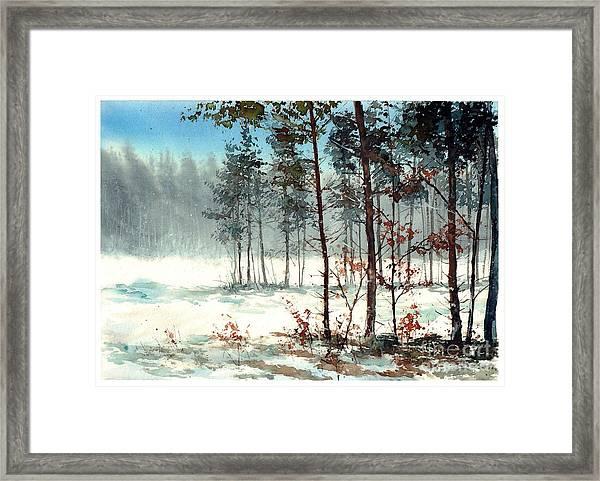 Dreaming Forest Framed Print