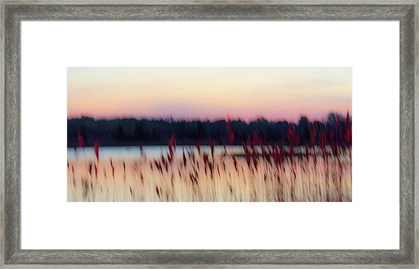Dreams Of Nature Framed Print