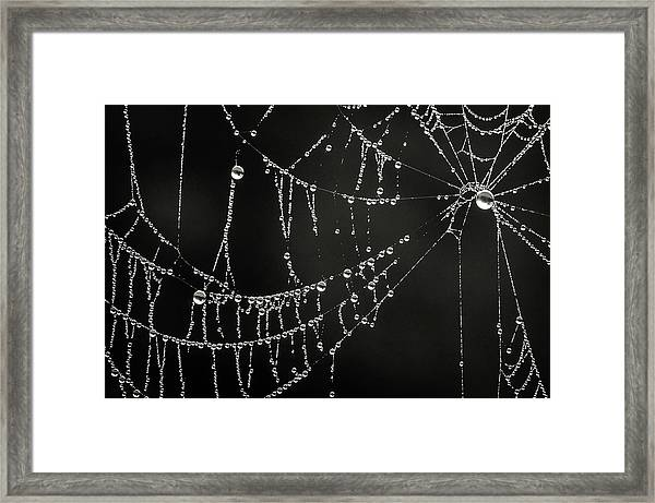 Dripping Framed Print