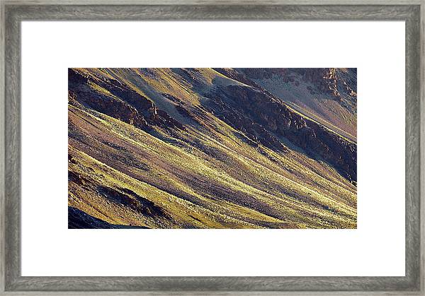 Framed Print featuring the photograph Early Morning Light On The Hillside In Sarchu by Whitney Goodey