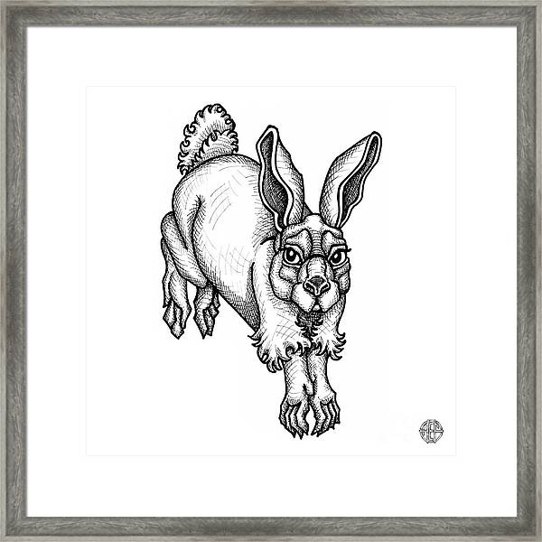 Eastern Cottontail Framed Print