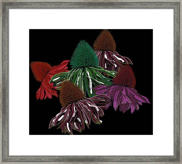 Echinacea Flowers With Black Framed Print