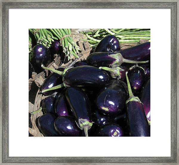 Eggplants   For Sale In In Chatikona  Framed Print